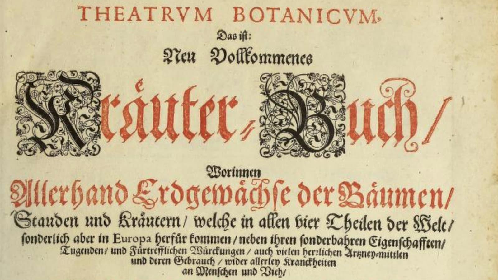 Theatrum Botanicum. Beitragsbild.