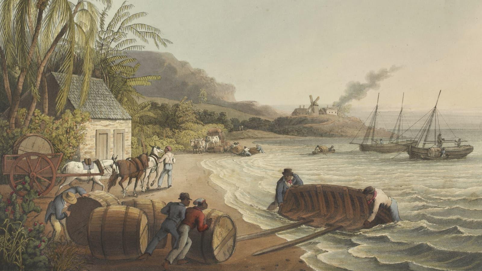 Zuckerrohrverarbeitung auf Antigua. Beitragsbild.