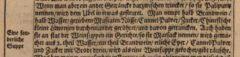 Adam Olearius: Orientalische Reise-Beschreibunge Jürgen Andersen aus Schleßwig. 1669, Seite 10.