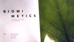 Biomimetics.