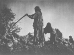 Befüllen der Erdgrube. Edward S. Curtis, The North American Indian, 1907.