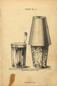 Harry Johnson - New and Improved Illustrated Bartender's Manual, nach Seite 72, Tafel 7,1888.