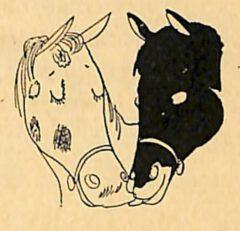 Horse's Neck - 1933 William Guyer - The Merry Mixer - Seite 43.