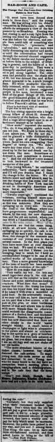 New Ulm Weekly Review, 31. Dezember 1884, Seite 1 - Ausschnitt