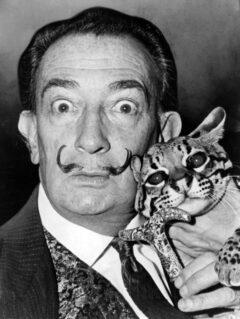 Salvador Dalí im Jahr 1965.