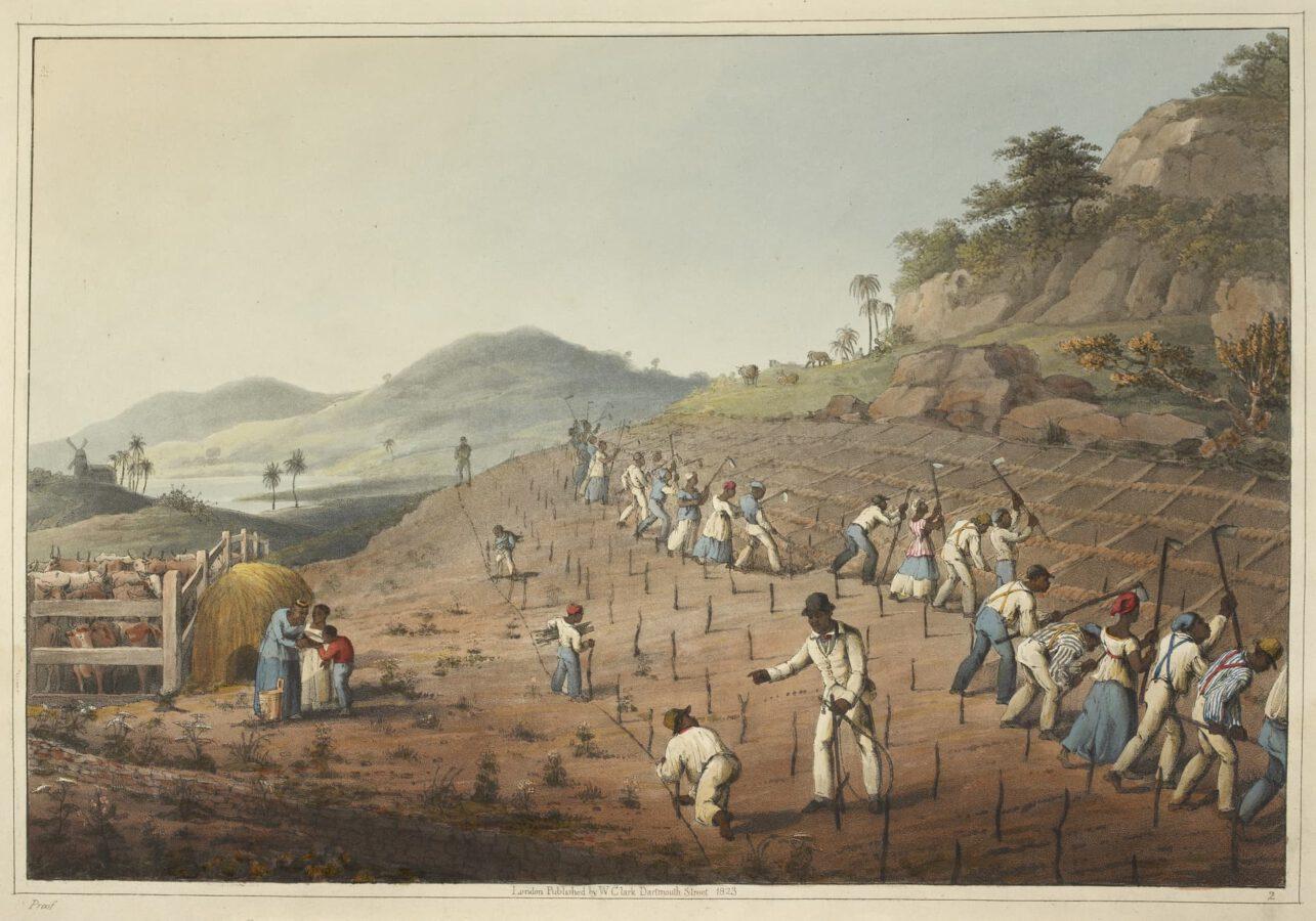 William Clark - Ten Views in the Island of Antigua (1823) - Tafel 2: Sklaven bei der Bodenbearbeitung, beim Graben der Löcher und beim Pflanzen des Zuckerrohrs.