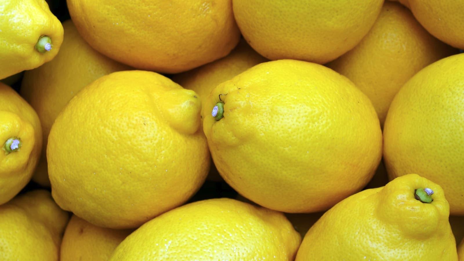 Zitronen.
