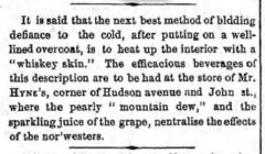 The Brooklyn Daily Eagle, 29. Dezember 1855, Seite 2.